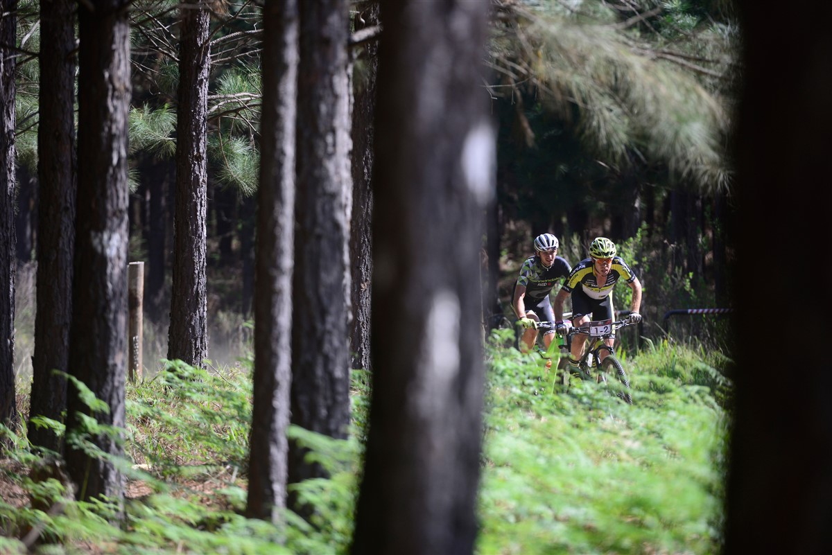 The purpose-built singletrack in the forests around George will be where the time trial stage will be held on Day 4 of the 2017 Momentum Health Cape Pioneer Trek, presented by Biogen. Photo credit: www.zcmc.co.za